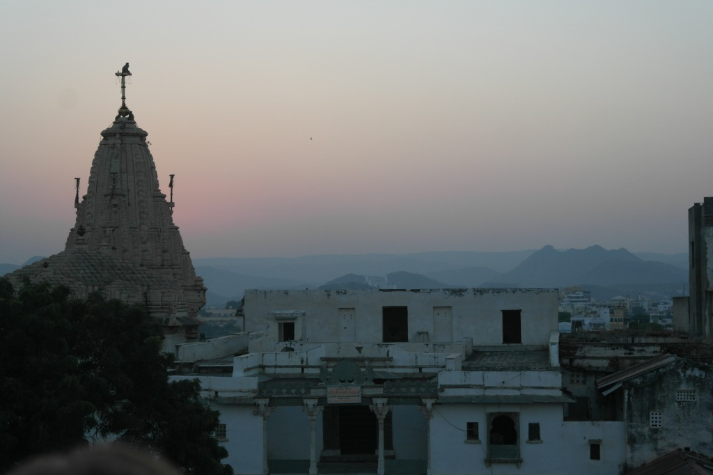 Udaipur monkey watching sunset on temple